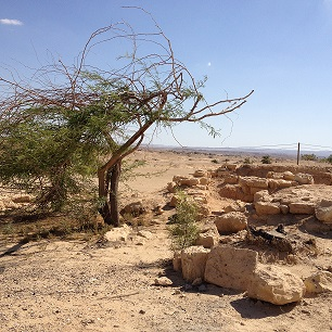 Biblical Tamar Park in the Arava desert, Israel.