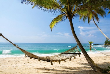 A hammock on a beautiful beach.