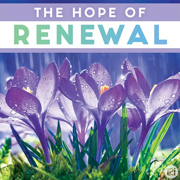 The Hope of Renewal