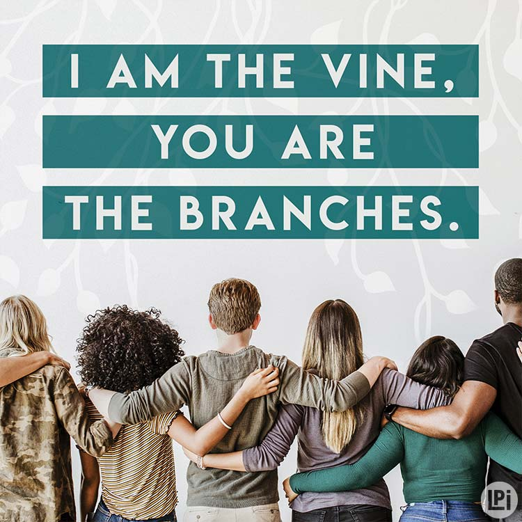 I am the vine. You are the branches.