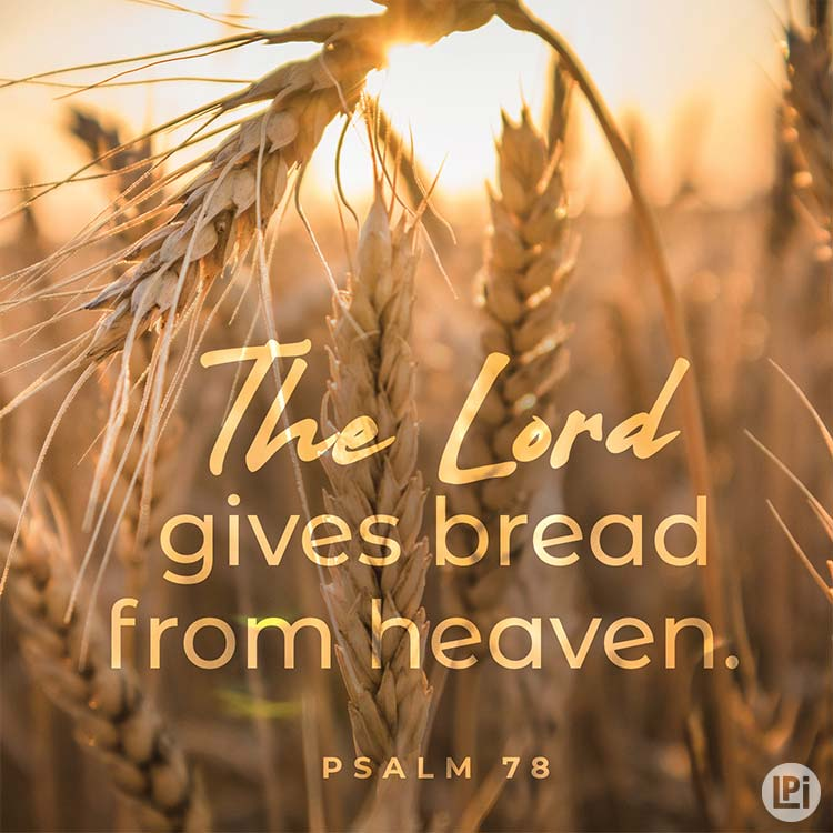 The Lord gives bread from heaven.